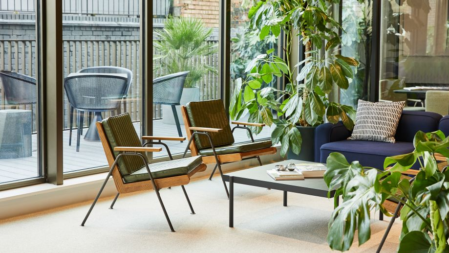 York House breakout space with comfortable seating and coffee table overlooking a leafy terrace.