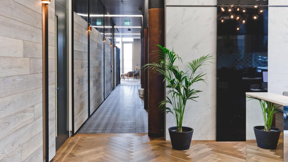 Leafy lobby at the Gridiron Building with parquet wooden flooring and a long corridor with lots of natural light.
