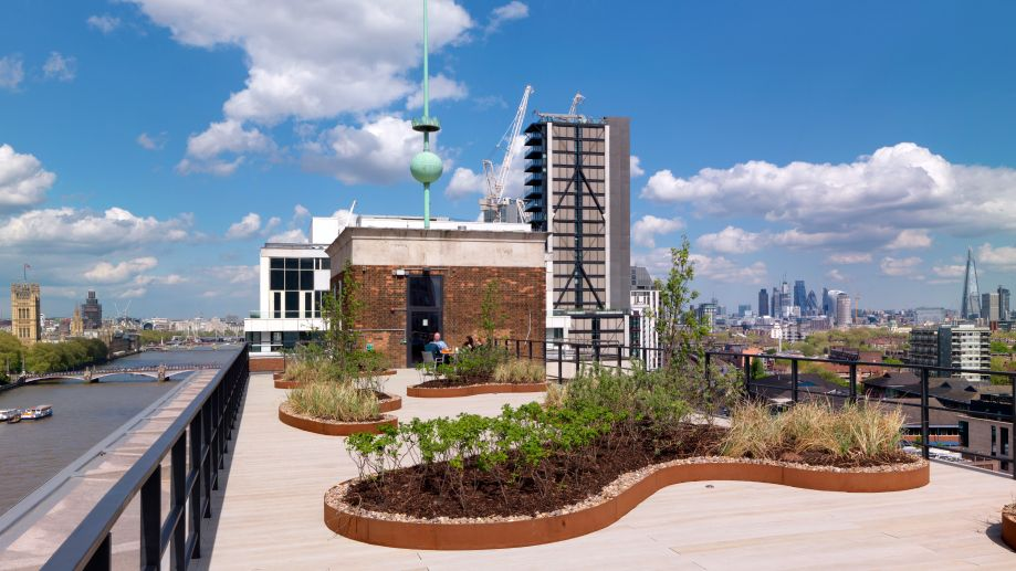 Roof garden with views of Thames and the City at TOG Tintagel House building Vauxhall
